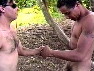 Iron Horse Brazil Nuts scene   scene