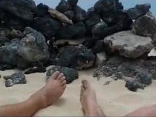 Paja en la playa con voyeurs mirando | bukkake